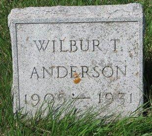 ANDERSON, WILBUR T. - Knox County, Nebraska   WILBUR T. ANDERSON - Nebraska Gravestone Photos