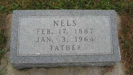 BJORKMAN, NELS - Knox County, Nebraska | NELS BJORKMAN - Nebraska Gravestone Photos