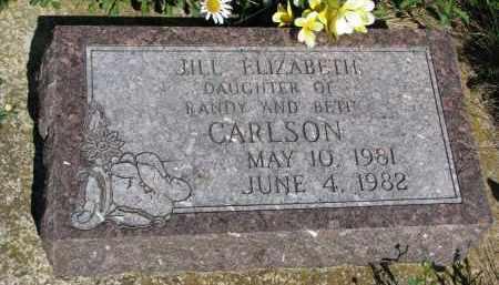 CARLSON, JILL ELIZABETH - Knox County, Nebraska | JILL ELIZABETH CARLSON - Nebraska Gravestone Photos