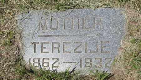 FOSTERMAN, TEREZIJE - Knox County, Nebraska   TEREZIJE FOSTERMAN - Nebraska Gravestone Photos