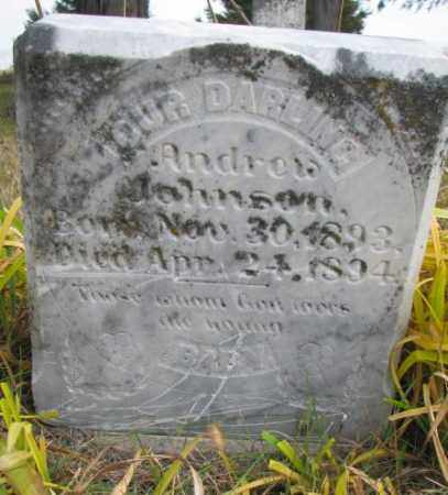 JOHNSON, ANDREW - Knox County, Nebraska | ANDREW JOHNSON - Nebraska Gravestone Photos