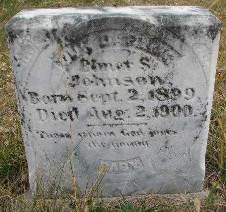 JOHNSON, ELMER S. - Knox County, Nebraska   ELMER S. JOHNSON - Nebraska Gravestone Photos