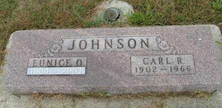 JOHNSON, CARL R. - Knox County, Nebraska | CARL R. JOHNSON - Nebraska Gravestone Photos