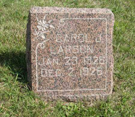 LARSON, CAROL J. - Knox County, Nebraska | CAROL J. LARSON - Nebraska Gravestone Photos