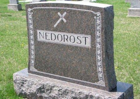 NEDOROST, *FAMILY MONUMENT - Knox County, Nebraska | *FAMILY MONUMENT NEDOROST - Nebraska Gravestone Photos