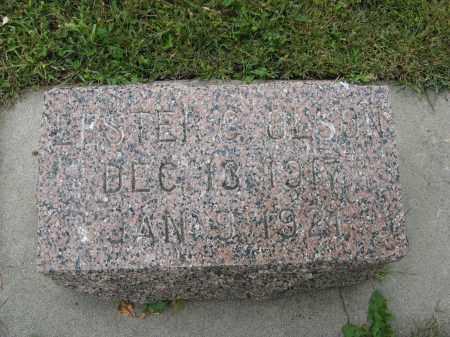 OLSON, LESTER C - Knox County, Nebraska | LESTER C OLSON - Nebraska Gravestone Photos