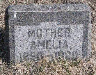 GRUCHOW SCHEER, AMELIA DOROTHEA - Knox County, Nebraska | AMELIA DOROTHEA GRUCHOW SCHEER - Nebraska Gravestone Photos