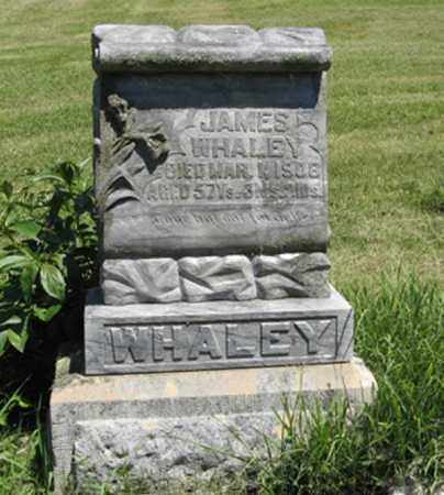 WHALEY, JAMES - Knox County, Nebraska | JAMES WHALEY - Nebraska Gravestone Photos