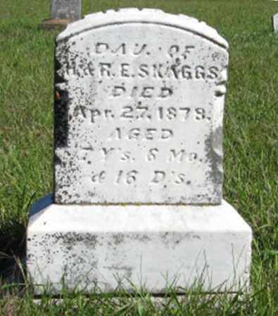 SKAGGS, DAUGHTER - Lancaster County, Nebraska | DAUGHTER SKAGGS - Nebraska Gravestone Photos
