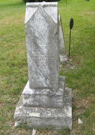 WAGONER, CATHERINE JANE - Lancaster County, Nebraska | CATHERINE JANE WAGONER - Nebraska Gravestone Photos