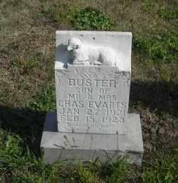 EVARTS, BUSTER - Lincoln County, Nebraska | BUSTER EVARTS - Nebraska Gravestone Photos