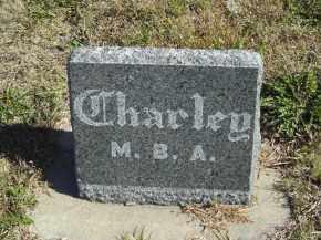 GUSTAFSON, CHARLEY - Lincoln County, Nebraska | CHARLEY GUSTAFSON - Nebraska Gravestone Photos