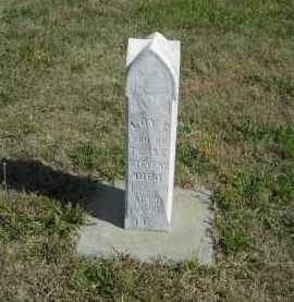 STEVENS, LOY C. - Lincoln County, Nebraska | LOY C. STEVENS - Nebraska Gravestone Photos