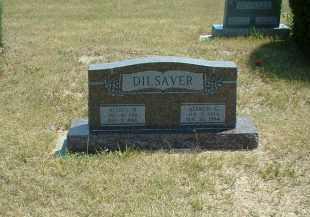 DILSAVER, AGNES - Loup County, Nebraska | AGNES DILSAVER - Nebraska Gravestone Photos