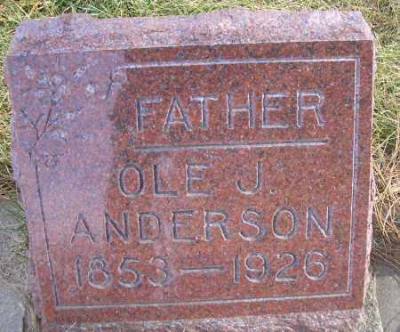 ANDERSON, OLE JOHN - Madison County, Nebraska | OLE JOHN ANDERSON - Nebraska Gravestone Photos