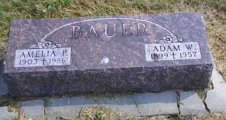 BAUER, AMELIA P. - Madison County, Nebraska | AMELIA P. BAUER - Nebraska Gravestone Photos
