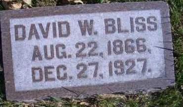 BLISS, DAVID W - Madison County, Nebraska | DAVID W BLISS - Nebraska Gravestone Photos