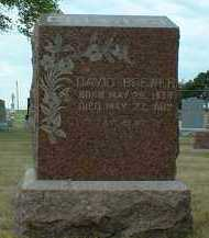 BREWER, DAVID - Madison County, Nebraska | DAVID BREWER - Nebraska Gravestone Photos