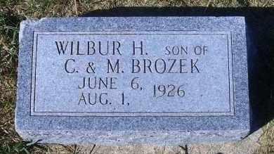 BROZEK, WILBER H. - Madison County, Nebraska | WILBER H. BROZEK - Nebraska Gravestone Photos