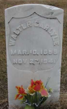 CARLYLE, WALTER - Madison County, Nebraska | WALTER CARLYLE - Nebraska Gravestone Photos