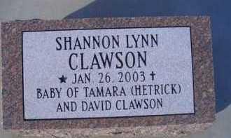 CLAWSON, SHANNON LYNN - Madison County, Nebraska | SHANNON LYNN CLAWSON - Nebraska Gravestone Photos