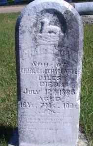 DALES, CHARLES W - Madison County, Nebraska | CHARLES W DALES - Nebraska Gravestone Photos