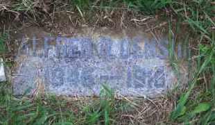 DENSON, ALFRED R - Madison County, Nebraska | ALFRED R DENSON - Nebraska Gravestone Photos