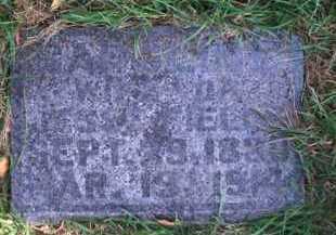 FIELDS, CAROLINE - Madison County, Nebraska   CAROLINE FIELDS - Nebraska Gravestone Photos
