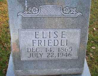 FRIEDLI, ELSIE - Madison County, Nebraska | ELSIE FRIEDLI - Nebraska Gravestone Photos