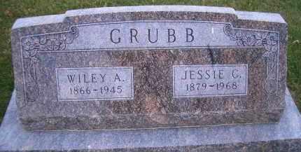 HANKS GRUBB, JESSIE C - Madison County, Nebraska | JESSIE C HANKS GRUBB - Nebraska Gravestone Photos