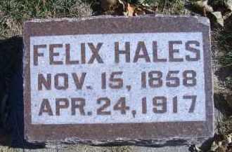 HALES, FELIX - Madison County, Nebraska | FELIX HALES - Nebraska Gravestone Photos