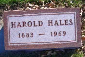 HALES, HAROLD - Madison County, Nebraska | HAROLD HALES - Nebraska Gravestone Photos