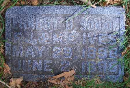 IVES, FRANK D - Madison County, Nebraska | FRANK D IVES - Nebraska Gravestone Photos