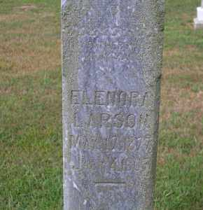 LARSON, ELENORA - Madison County, Nebraska   ELENORA LARSON - Nebraska Gravestone Photos