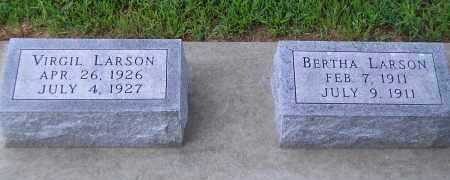 LARSON, BERTHA - Madison County, Nebraska | BERTHA LARSON - Nebraska Gravestone Photos
