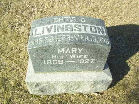 LIVINGSTON, CHRIS - Madison County, Nebraska | CHRIS LIVINGSTON - Nebraska Gravestone Photos