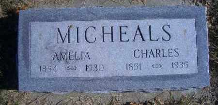 MICHEALS, AMELIA - Madison County, Nebraska | AMELIA MICHEALS - Nebraska Gravestone Photos