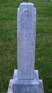 LENZ MILLER, CHRISTINE - Madison County, Nebraska   CHRISTINE LENZ MILLER - Nebraska Gravestone Photos