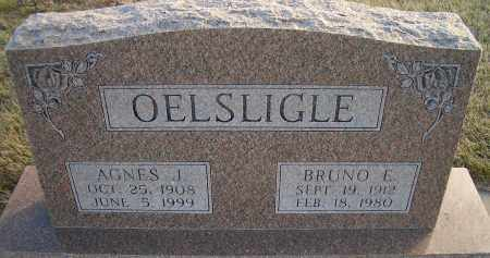 OELSLIGLE, AGNES J - Madison County, Nebraska | AGNES J OELSLIGLE - Nebraska Gravestone Photos