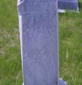 ORR, ANNIE E. - Madison County, Nebraska | ANNIE E. ORR - Nebraska Gravestone Photos