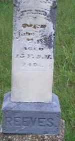 REEVES, FRED - Madison County, Nebraska | FRED REEVES - Nebraska Gravestone Photos