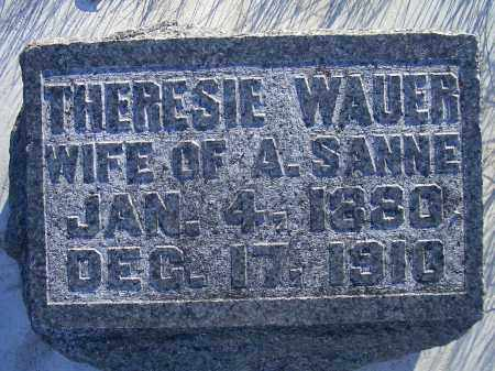 """WAUER SANNE, THERESIE """"TRACY"""" - Madison County, Nebraska 
