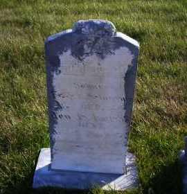 SCHEERGER, FRIEDRICH W. - Madison County, Nebraska | FRIEDRICH W. SCHEERGER - Nebraska Gravestone Photos
