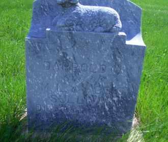 SULLIVAN, DARROLD M. - Madison County, Nebraska | DARROLD M. SULLIVAN - Nebraska Gravestone Photos