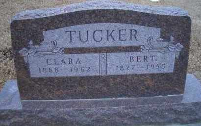 TUCKER, BERT - Madison County, Nebraska | BERT TUCKER - Nebraska Gravestone Photos
