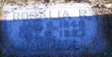 EIFFER WAUER, ROSALIA R - Madison County, Nebraska | ROSALIA R EIFFER WAUER - Nebraska Gravestone Photos