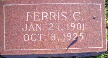 WESTERVELT, FERRIS C - Madison County, Nebraska | FERRIS C WESTERVELT - Nebraska Gravestone Photos