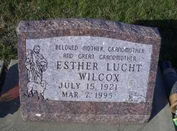 LUCHT WILCOX, ESTHER - Madison County, Nebraska | ESTHER LUCHT WILCOX - Nebraska Gravestone Photos