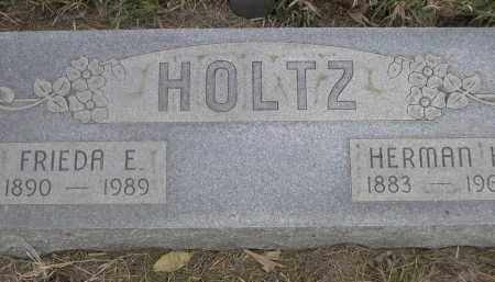 HOLTZ, HERMAN - Merrick County, Nebraska | HERMAN HOLTZ - Nebraska Gravestone Photos