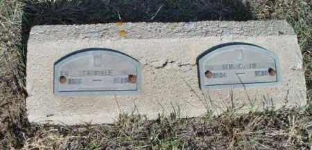 LIF, ERIC O. - Morrill County, Nebraska | ERIC O. LIF - Nebraska Gravestone Photos